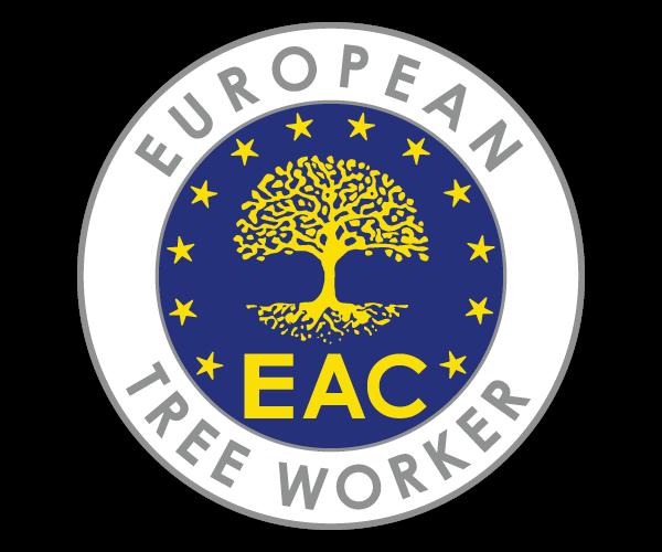European tree worker(Trädfällning i Stockholm)